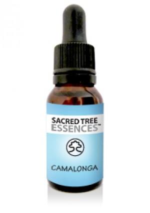 Camalonga Essence (15ml)