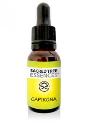 Capirona Essence (15ml)