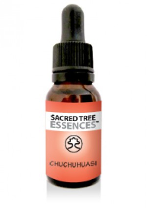 Chuchuhuasi Essence (15ml)